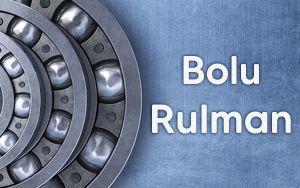 Bolu Rulman